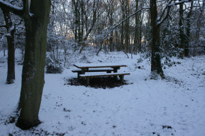 picnic-bench-in-snow